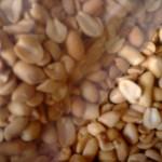 Cacahuètes : Arachides salées, séchées, grillées et pelées